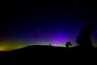 Aurora, meteor shower and ponies.
